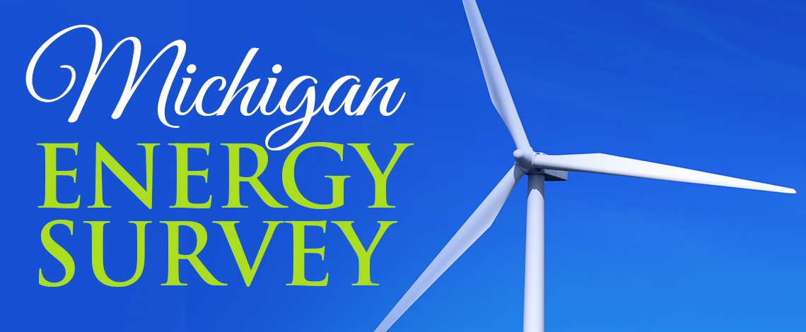 mi-energy-survey